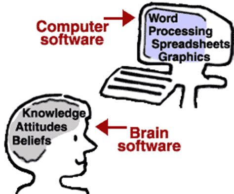 10 Important Differences Between Brains and Computers